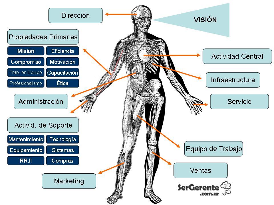 Diagn stico de la anatomia de una empresa grandes pymes for Areas de cocina y sus funciones