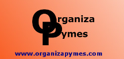 BANNER ORGANIZAPYMES GRANDES PYMES (22-03-2015)