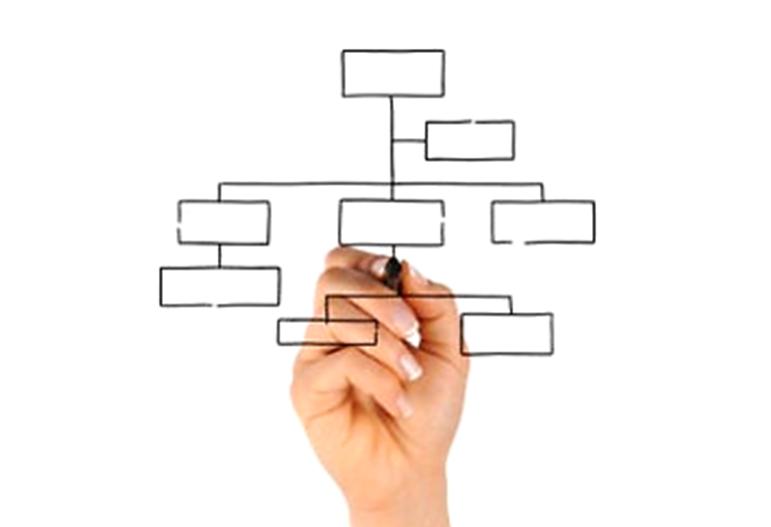 Falta de seriedad en el organigrama empresarial, un problema medular