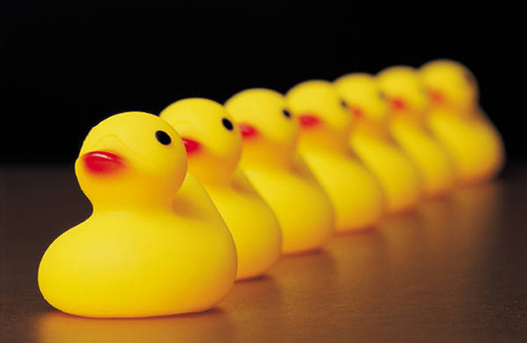 Funciones de liderazgo para el Management sistémico
