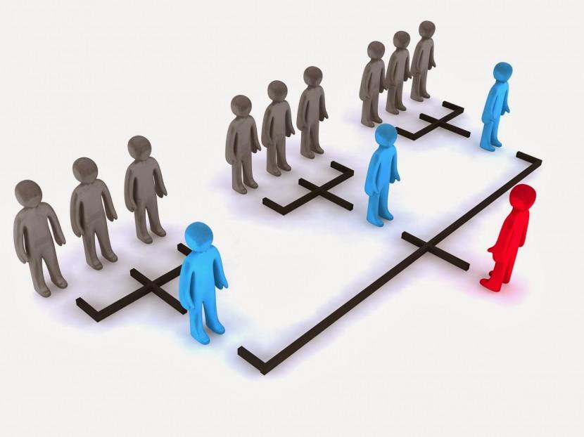 Como organizar correctamente su empresa
