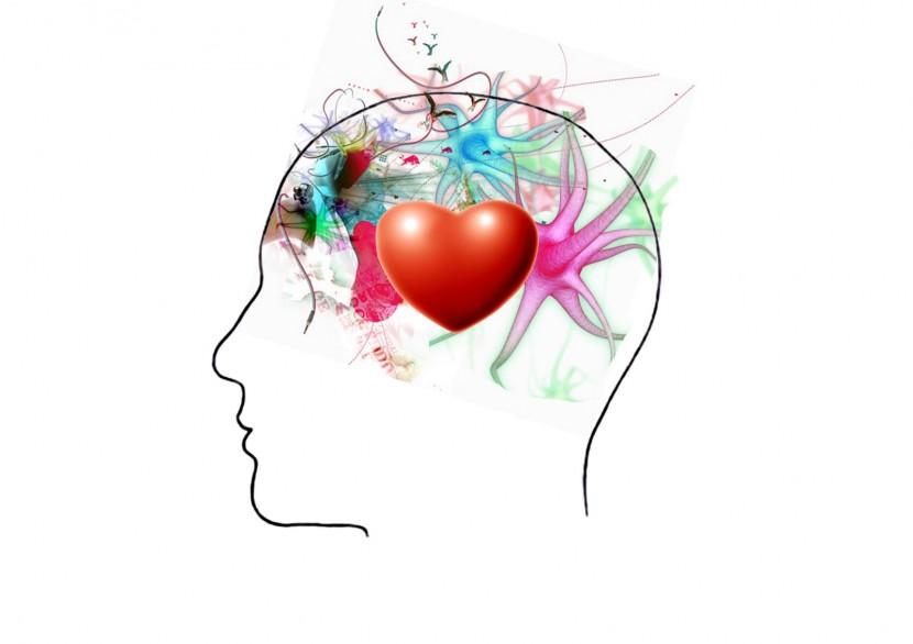 ¿Para qué quieres la inteligencia emocional?
