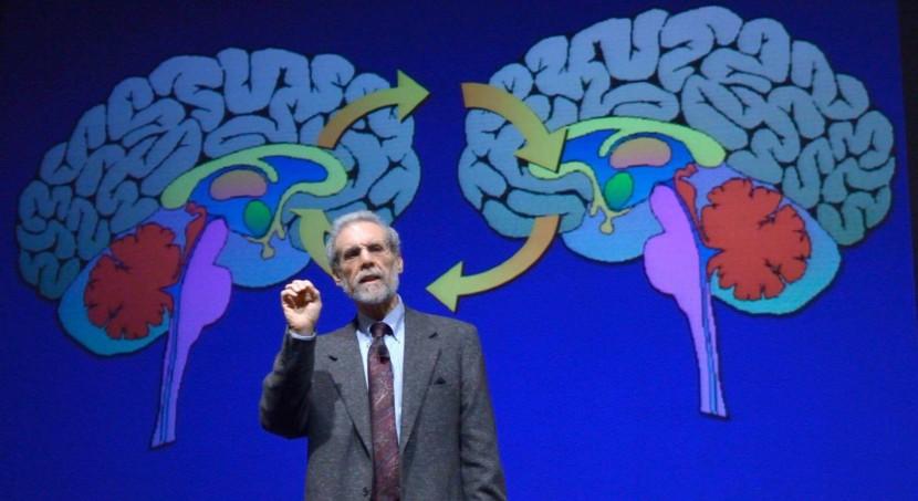 "Daniel Goleman: ""Enseñe a su Cerebro a Sentir de Manera Efectiva"""