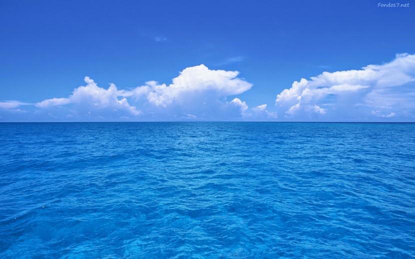 Co-creación y océanos azules