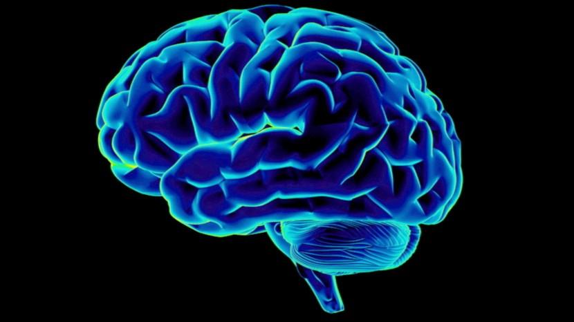 5 cosas que debes hacer cada día para aumentar tu inteligencia