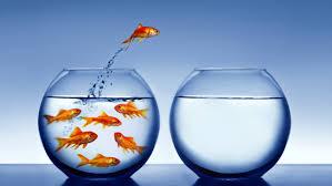 Extermina el miedo y da el 'salto de tu vida'