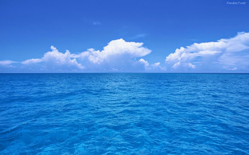 Un mercado para mi startup: la estrategia del océano azul