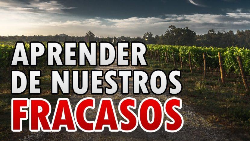 APRENDER DE LOS FRACASOS