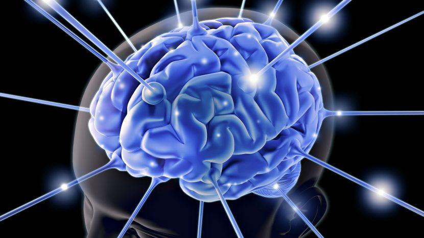 La inteligencia emocional en el éxito de las organizaciones.