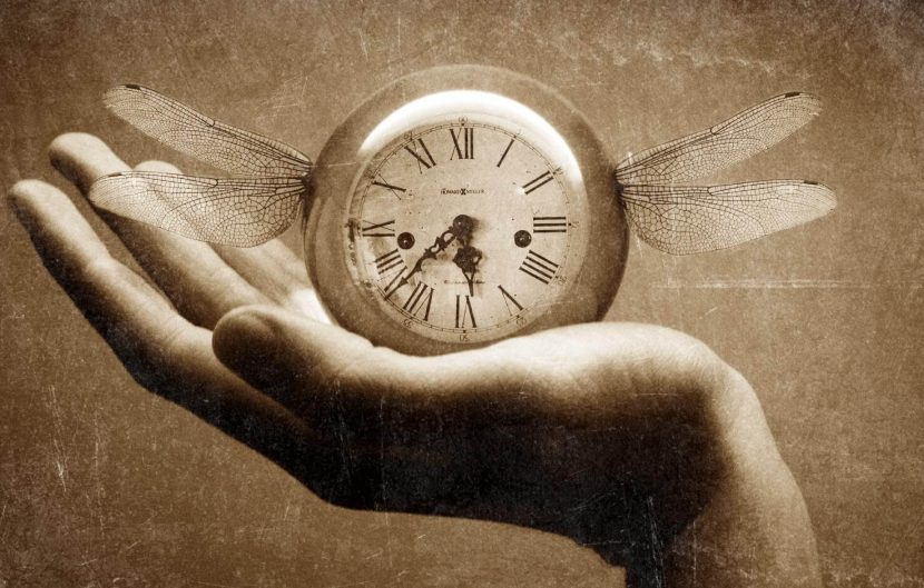 La velocidad de nuestras vidas