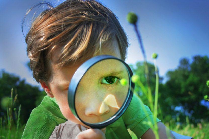 La importancia de la curiosidad