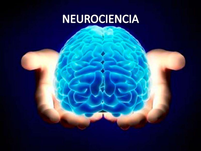 La neurociencia dice que estas 3 frases harán que sus clientes compren más a menudo. según INC