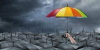 Mejora continua o renovarse – Qué alternativa seguir