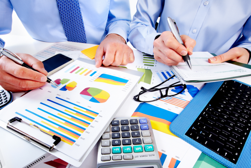 El Control de Gestión de la Empresa y su relevancia