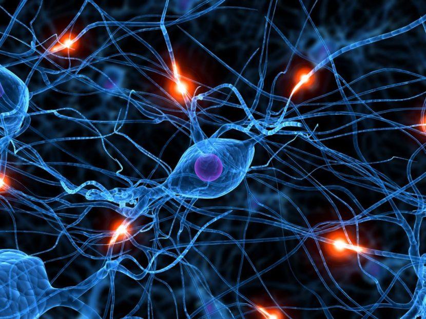 El triunfo de las neuronas sobre los átomos