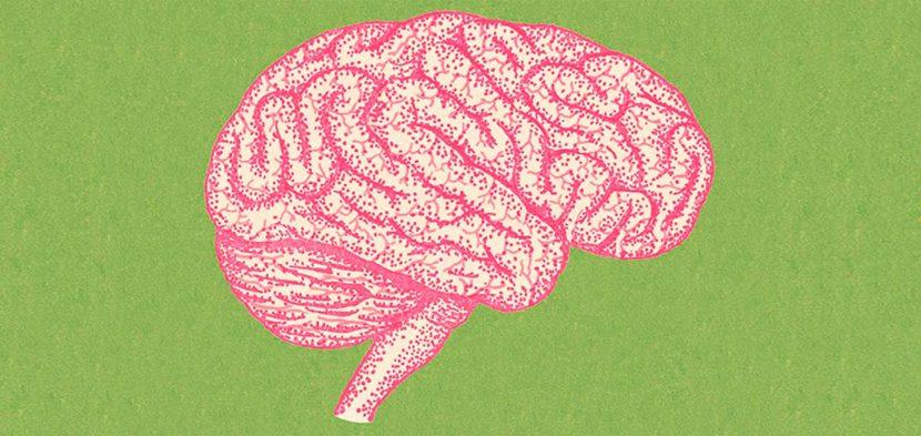 El maravilloso cerebro emocional de las personas resilientes