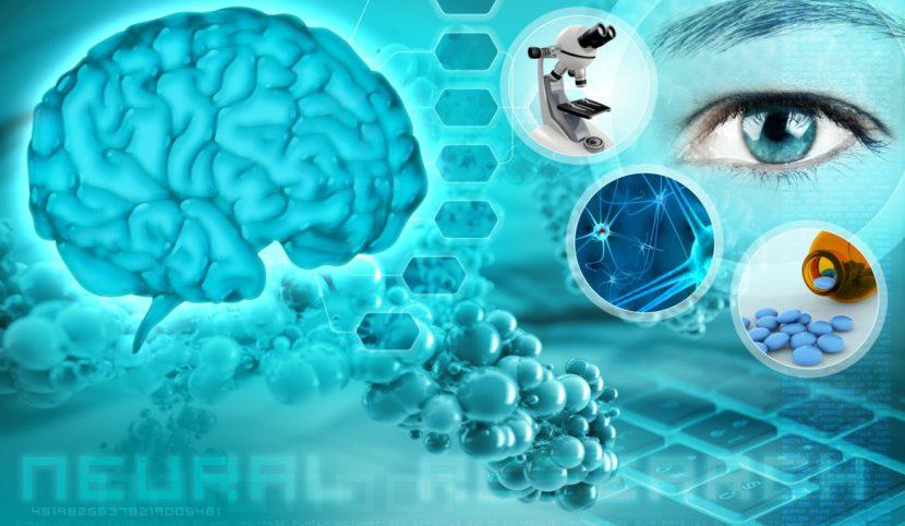 Neurociencia en 4 pasos para controlar tu estrés