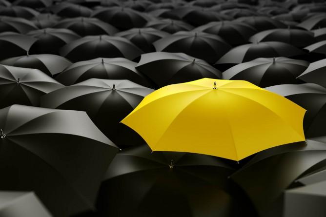 15 maneras de diferenciar tus productos, servicios y estilos.