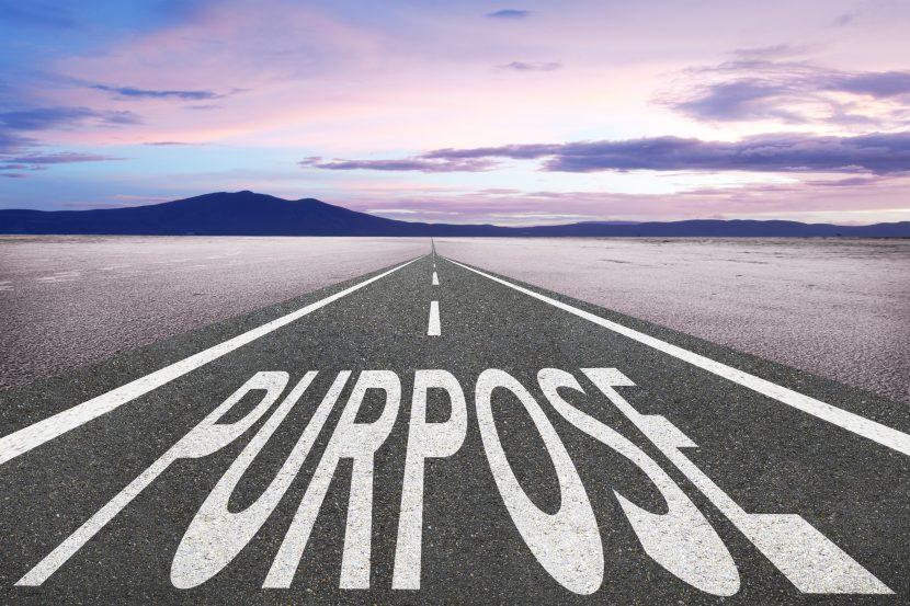 El propósito