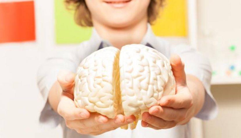 La hora del hemisferio derecho
