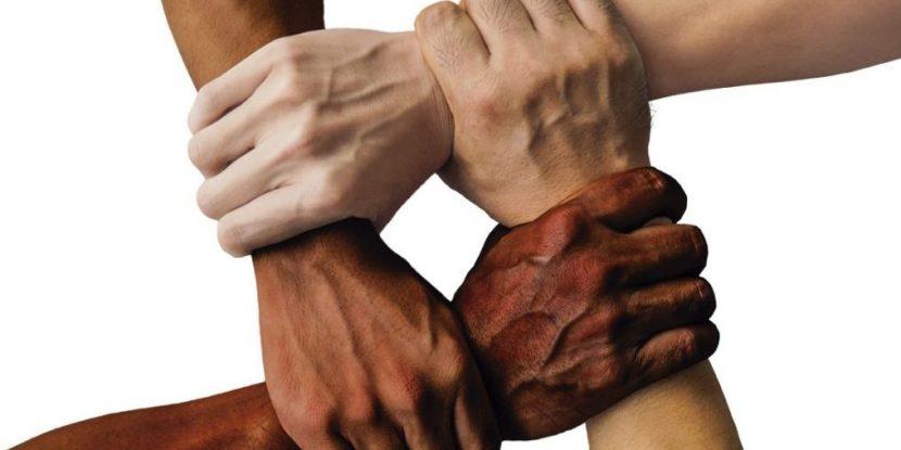 Impulsar la cultura del colaborar y del compartir