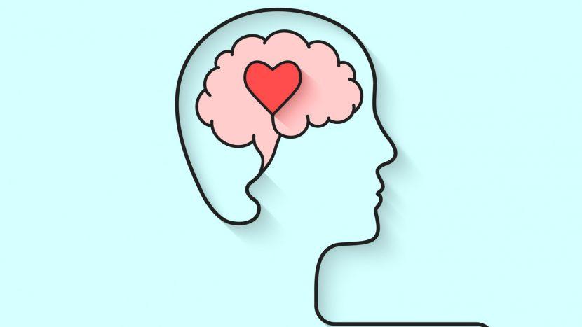 El sistema de aptitudes de la inteligencia emocional. Enfoques y propuesta