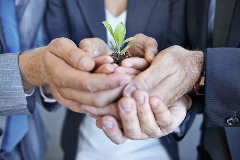 El proceso de cambio organizacional, cómo gestionarlo