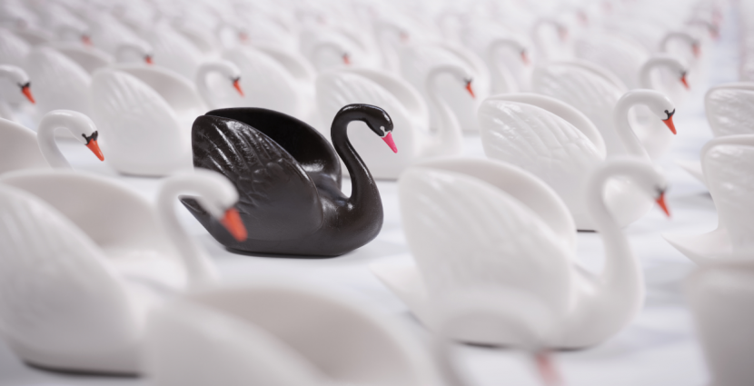 Cisnes negros: presupuestos y predicciones equivocadas