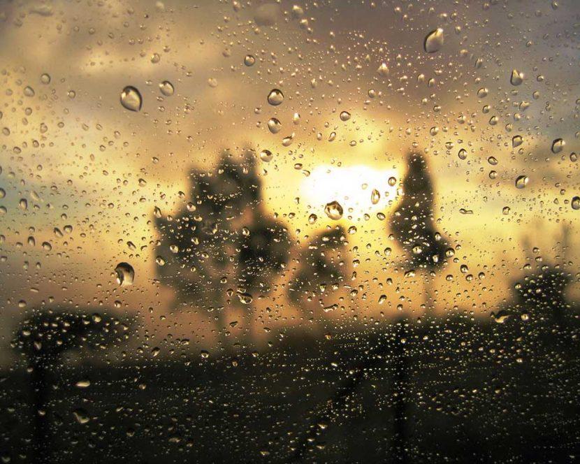 A pesar de la lluvia…