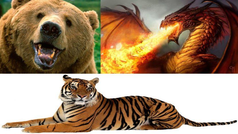 Oso, Tigre y Dragón en la empresa