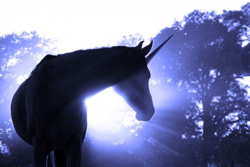 ¿Cómo sobrevivir cuando nuestra empresa no puede ser «unicornio»?