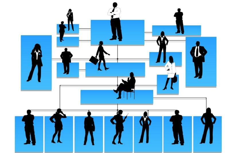 La PYME saludable : el esqueleto o la estructura organizacional
